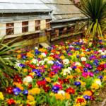 Architektura Krajobrazu – rozwiązanie dla ogrodu
